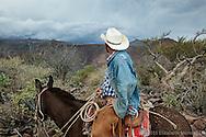 Armando cruzando la sierra de Santa Marta hacia el rancho San Gregorio, donde el camino de carro mas cercano se encuentra a aproximadamente 5 horas en bestia.