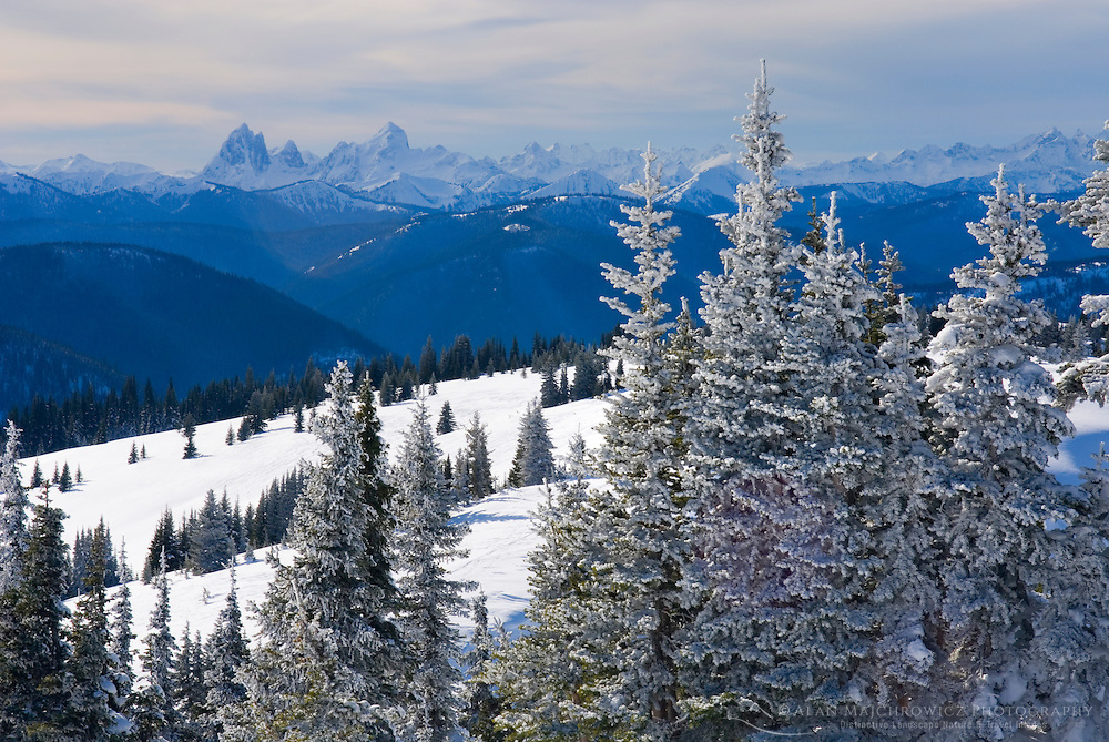 Winter view from Big Buck Mountain, Manning Provincial Park British Columbia Canada