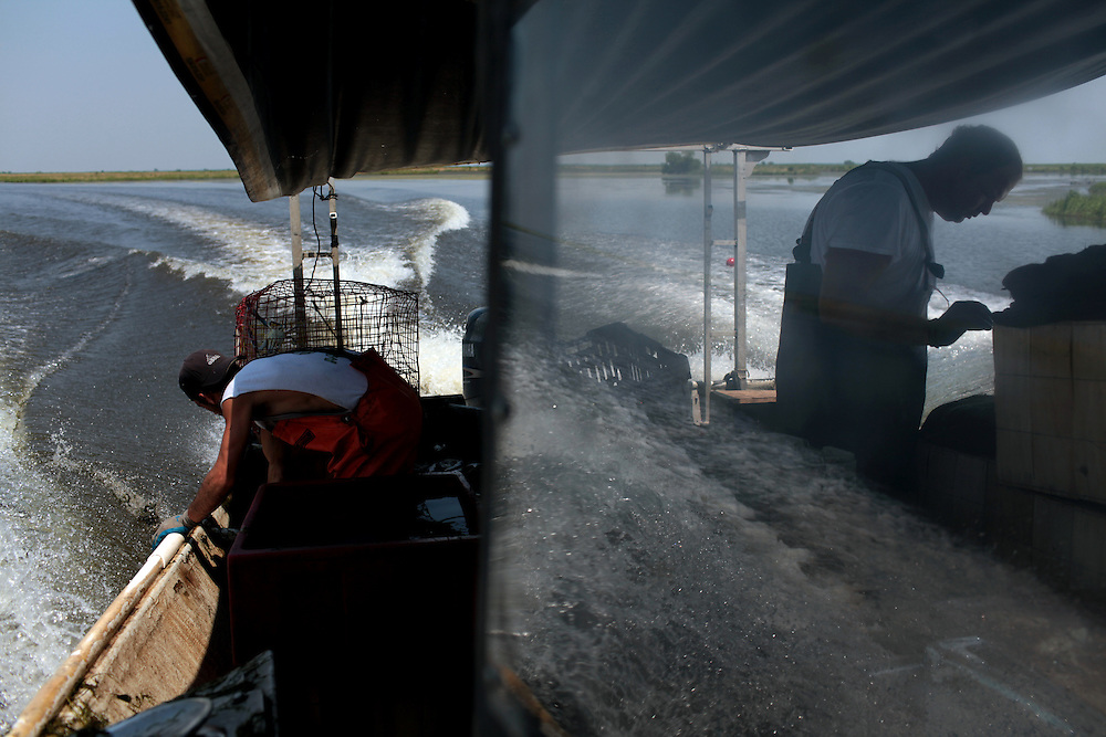 Deck hand Michael Labat, left, and Lance Melerine, right, work on the boat as they head through Plaquemines Parish, LA to pick up more crab pots on May 25th, 2010. Local fisherman from St Bernard Parish were desperately fishing the surrounding bayou to earn as much income as possible before authorities shut down the crab fishing while the BP oil spill inched closer.
