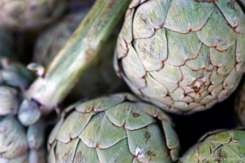USA, California, Los Angeles. Locally grown organic artichokes at the Hollywood Farmer's Market.