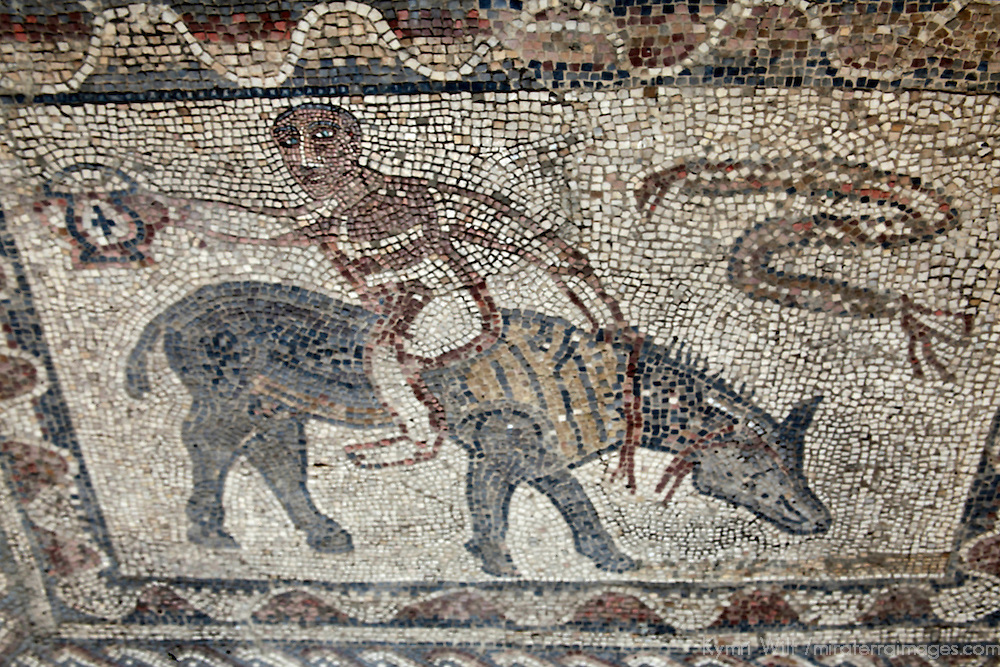 Africa, Morocco, Volubilis. Mosaic in the Roman ruins at Volubilis, a UNESCO World Heritage Site.
