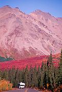 Alaska. Denali NP. Travelers along the Denali Park Rd have amazing views all around them.