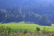 Carintian landscape