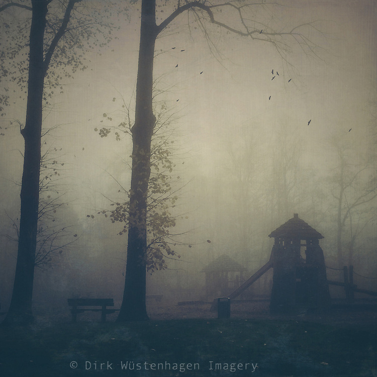 Playground on a misty November morning with crows circling the sky - shot & processed on iPhone