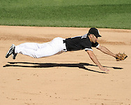 CHICAGO - SEPTEMBER 12:  Omar Vizquel #11 of the Chicago White Sox makes a diving grab of a ground ball hit by Lucas May #22 of the Kansas City Royals on September 12, 2010 at U.S. Cellular Field in Chicago, Illinois.  Vizquel got up to throw out May.  The White Sox defeated the Royals 12-6.  (Photo by Ron Vesely)