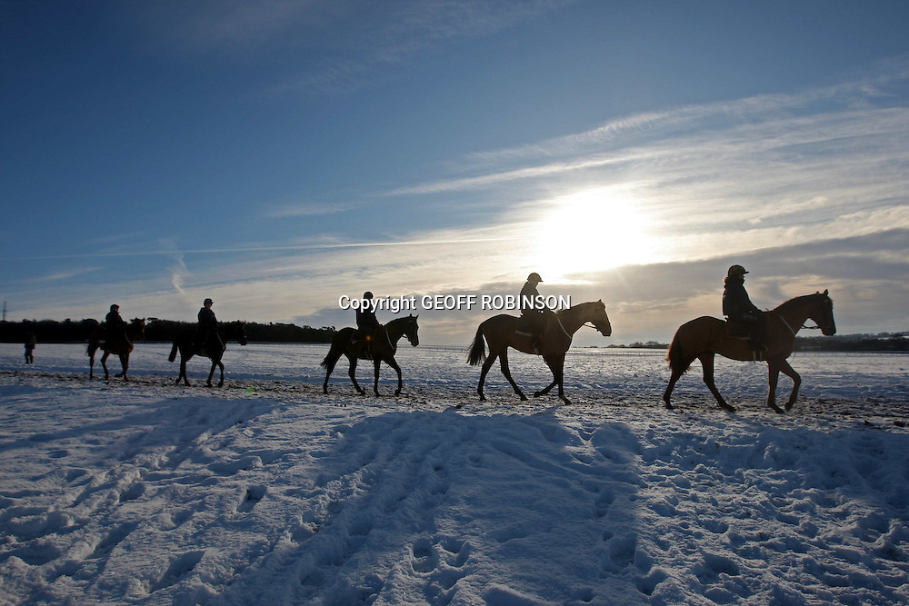 """PIC SHOWS HORSES OUT ON NEWMARKET GALLOPS IN SUFFOLK ON MONDAY MORNING DESPITE THE SNOW AND FREEZING WEATHER.MORE SNOW IS PREDICTED THIS WEEK...Winter weather is causing widespread disruption across the UK...Hundreds of people were stranded at Manchester Airport overnight after flights were suspended. Aberdeen and Inverness airports were also affected ..In Scotland, motorists were warned not to use icy roads in Strathclyde, Stirling and Dumfries and Galloway. ..In Wales, 122 schools were closed, mainly in the south Wales valleys while a crash closed part of the M4. In parts of Northern Ireland roads are """"bad"""". ..A Met Office severe weather warning is in place for ice across many parts of the UK, where snow freezing on the ground is causing treacherous conditions. .."""