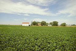 Farm landscape Lancaster PA