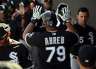 MESA, AZ - MARCH 08:  Jose Abreu #79 of the Chicago White Sox celebrates with teammates during the spring training game between the Oakland Athletics and Chicago White Sox on March 8, 2015 at Hohokam Stadium in Mesa, Arizona. (Photo by Ron Vesely)   Subject:  Jose Abreu
