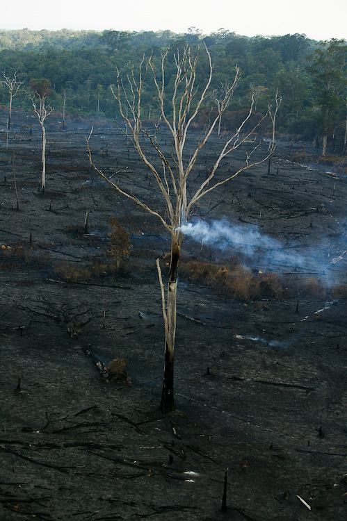 Dec. 10, 2003. Rain forest cleared by fire for cattle and soy plantations in Para State, Brazil. ©Daniel Beltra