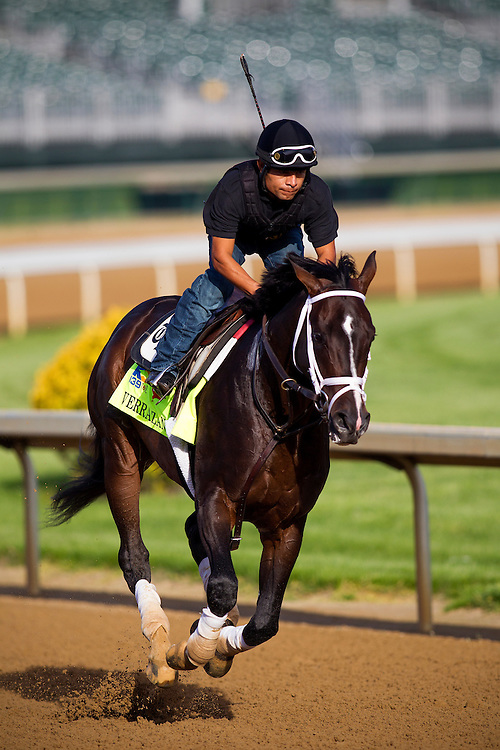 Kentucky Derby contender Verrazano gallops at Churchill Downs in Louisville, KY on May 02, 2013. (Alex Evers/ Eclipse Sportswire)