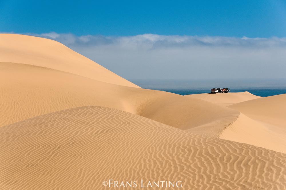 Off-road vehicles in sand dunes near the Atlantic Ocean, Namib-Naukluft National Park, Namibia