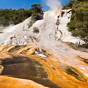 Hot springs water cools and deposits white travertine and hosts orange microbial mats at Orakei Korako Cave and Thermal Park, New Zealand, North Island