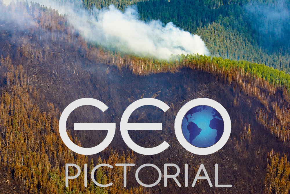 View from a smoke jumpers helicopter of a wild fire burning out of control in a remote region of the Taiga Boreal Forest in Siberia, Russian Far East;