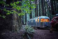 Airstream camping in Humboldt Redwoods State Park.