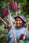 Juana Aliaga Luque photographed in her cacao farm near the town of Santa Rosa in the Madre de Dios region of Peru.
