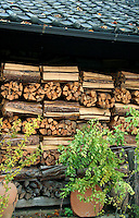 Rural Rustic Wood Pile - Firewood is still used for specialized burning in rural Japan, mostly for cooking and occasionally heating in wood-burning fireplaces and stoves.