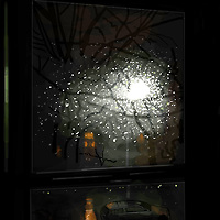 TREE AND BRANCHES OF A BROOKLYN STREET ILLUMINATED BY STREET LIGHT AND SEEN THROUGH RAIN SOAKED WINDOW AT NIGHT