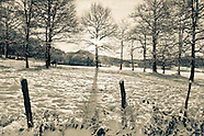 WINTER LANDSCAPE GALLERY
