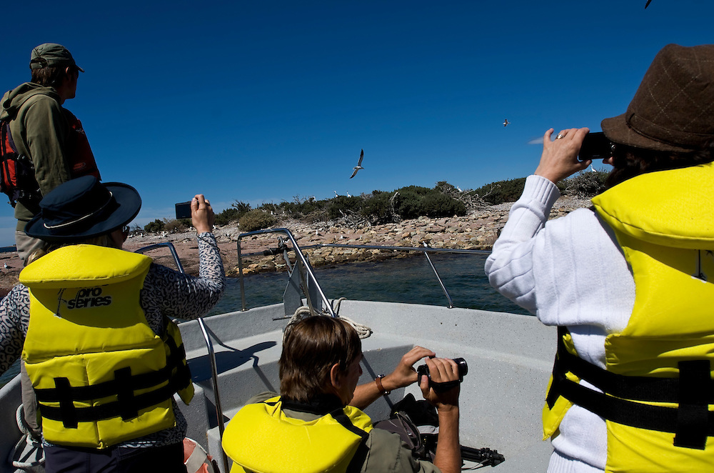 Tourists take pictures during a Bahia Bustamante boat excursion in Patagonia, Argentina.