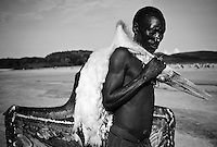 The Hadzabe, or Hadza, are one of the last tribes of hunter-gatherers in the world.  They live around Lake Eyasi and the Serengeti Plateau and today, number 1000-2000, although just 300-400 still live a traditional lifestyle. The Hadzabe are superb opportunistic hunter-gatherers.  They hunt animals, and collect honey, fruit, tubers and berries for food.  They also use a wide variety of plant species for medicinal purposes. The future of the Hadzabe is very uncertain.  Their existence is threatened by land encroachment by farmers and herders, lack of game to hunt, diseases including TB and HIV/AIDS and substance abuse.