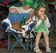 Mary Kate Ninness, 4, of Marietta, Ga. eats a cookie next to her 4-month-old puppy Athena during the 191st St. Patrick's Day parade, Tuesday, March 17, 2015, in Savannah, Ga.Organizers have long billed the Savannah St. Patrick's Day parade as the nation's second largest based on the size of the procession, rather than the number of people watching. (AP Photo/Stephen B. Morton)