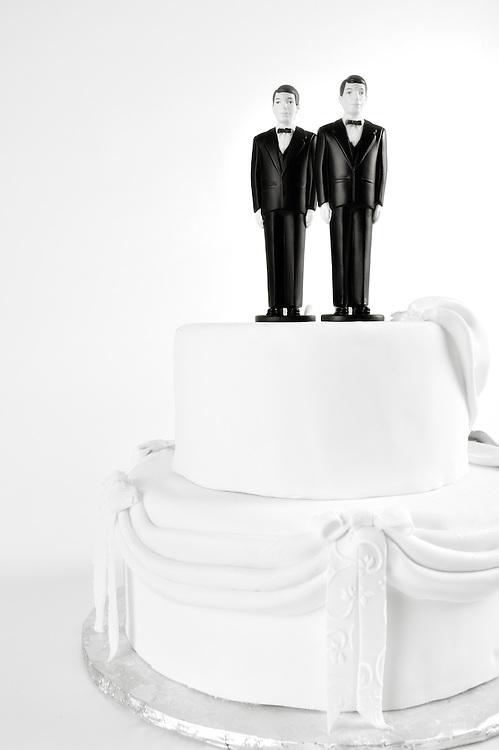 Aclu Wedding Cake