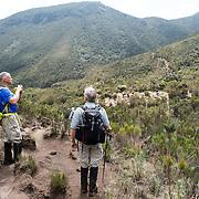 Lemosho Route Day 2