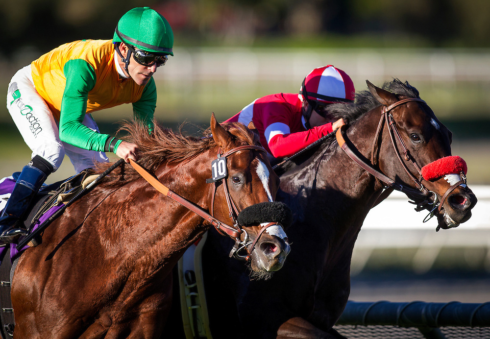 December 26, 2015: Om with Gary Stevens (green cap) wins the Mathis Brothers Mile Stakes at Santa Anita Park, Arcadia CA. Evers/ESW/CSM