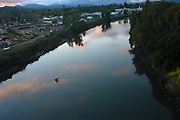A swallow flies above the Napa River in Napa, California,USA.