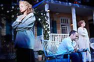 All My Sons by Arthur Miller at The Rose Theatre, Kingston<br /> Directed by Michael Rudman<br /> Set and Costume Designer Michael Taylor<br /> Lighting Designer David Howe<br /> Sound Designer Martin Hodgson<br /> Composer Matthew Scott<br /> <br /> Cast:<br /> Grace Carter<br /> Penny Downie<br /> Edward Harrison<br /> David Horovitch<br /> William Meredith<br /> Alison Pargeter<br /> David Partridge<br /> Alex Waldmann<br /> Francesa Zoutewelle