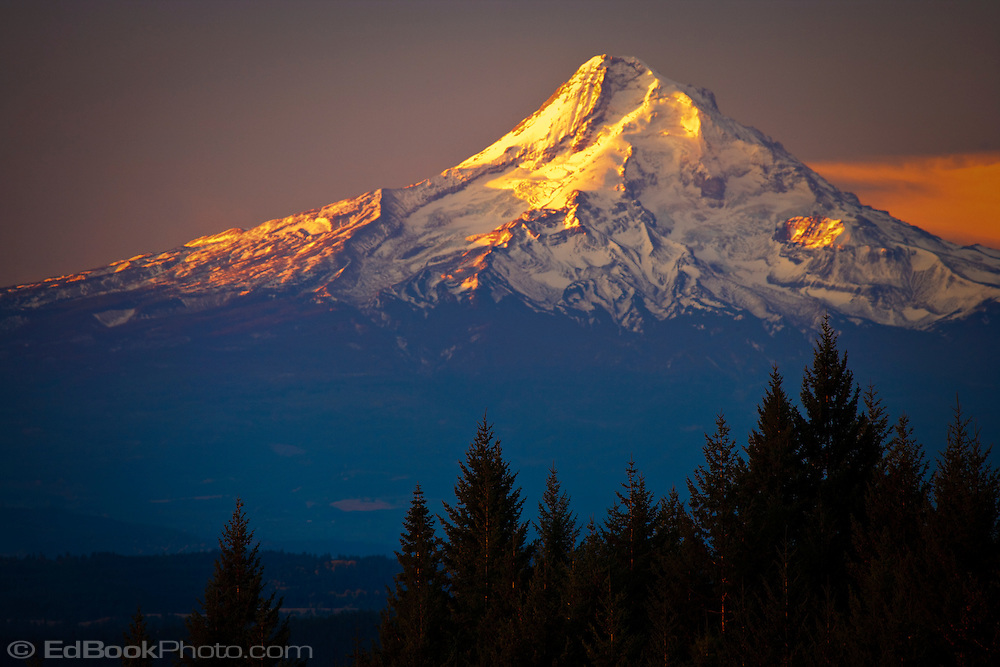 Mount Hood, Oregon, sunrise  with alpenglow as seen from the north across the Columbia River Gorge.