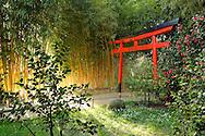 France, Languedoc Roussillon, Gard, Cevennes, Anduze, Prafrance, Générargues, La Bambouseraie, porte d'entrée du Vallon du dragon, jardin japonais, paysagiste: Erik Borja, camellias