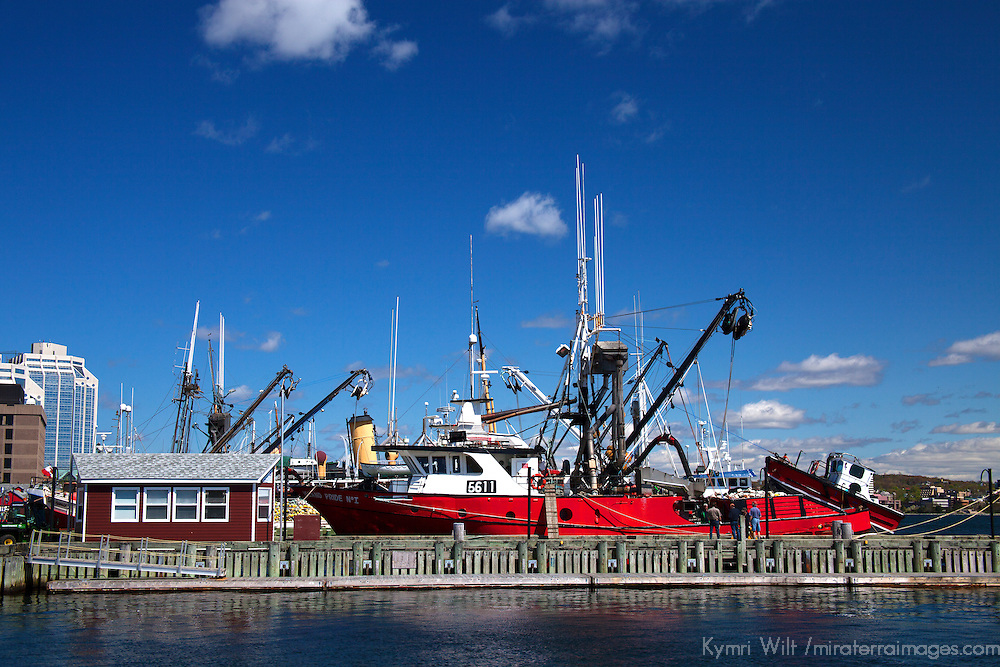 North America, Canada, Nova Scotia, Halifax. Fishing Boat in the Halifax harbor.