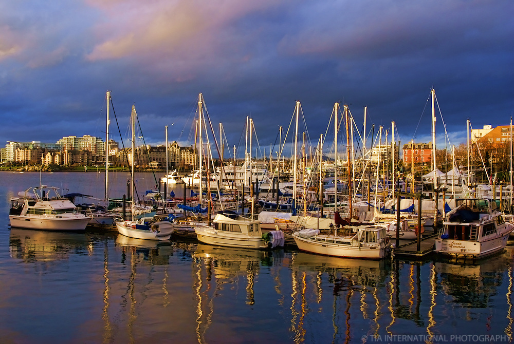 Sailboats, Inner Harbour, Victoria, British Columbia, Canada