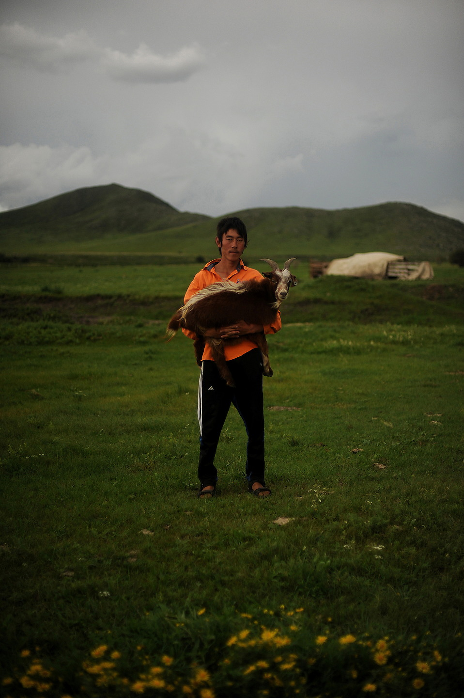 Teen Mongolian herder Otgonnar holds a goat. The number of livestock owned by most families is also well below the subsistence level. For a family to survive long-term, it is estimated the family needs at least 20 head of cattle or 70 sheep. About 20 percent of these families own fewer than 10 animals. — © Jeremy Lock/USAF