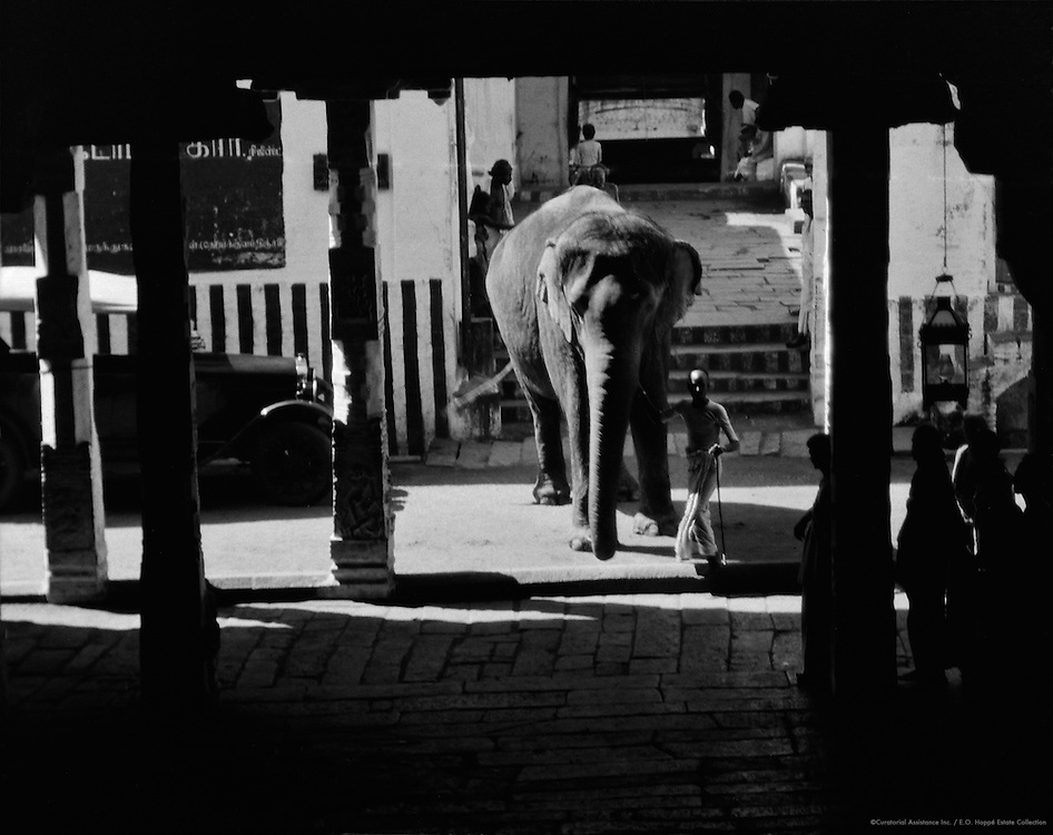 Elephant at the entrance to the Rock Fort Temple, Tiruchirappalli, 1929