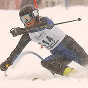 2010 MHSAA Ski Finals