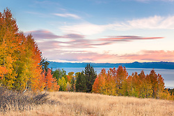 """Aspens Above Lake Tahoe 3"" - Photograph of yellow, orange, red, and green fall colored aspens above a blue Lake Tahoe, taken at sunset."