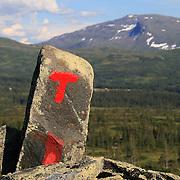 TT-merking fra Bleikåa ved Hersjøen i Selbu til Schulzhytta. Fongen (1441 moh) bak. Skarvene og Roltdalen nasjonalpark. Foto: Bente Haarstad Fongen, 1440 m.o.h. Stien fra Øverbygda, hersjøen og Bleikåa i Selbu og inn til Schulzhytta er merket av Trondhjems Turistforening og er en del av rutenettet til DNT i Sylan.