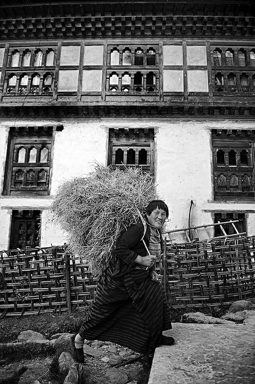 A woman in a rural mountain village in Bhutan return home with fodder for the livestock.