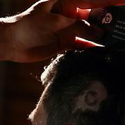 Hair Artist Johan Ruiz cutting Joseph Berardi hair during Scissor Candy open chair 12 Sunday, Apr. 27, 2014 at National Mechanic in Philadelphia Pennsylvania.