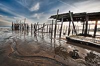 Old Pier at Provincetown  <br /> http://reallyrightstuff.com/Websiteinfo.aspx?fc=125<br /> <br /> TVC-33 / BH 55 LR / L Plate