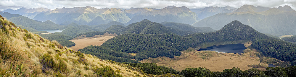 Above the tree line, the golden tussock and alpine tarns dominate the landscape along the Borland trail in Fiordland, New Zealand.