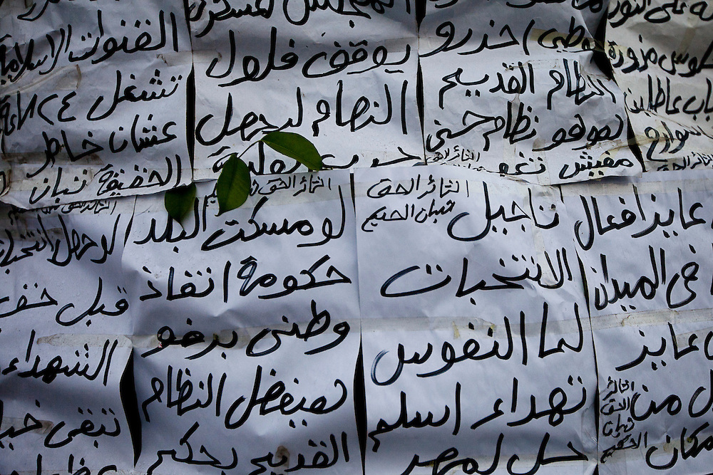 A leag sticks through protest flyers wrapping around a tree as demonstrations continue in Cairo's Tahrir Square, a day before Egyptians will vote in the first round of parliamentary elections. Hundreds of people have taken over the square in preparation for a long struggle to push the army to hand over control of the government to a civilian hands.