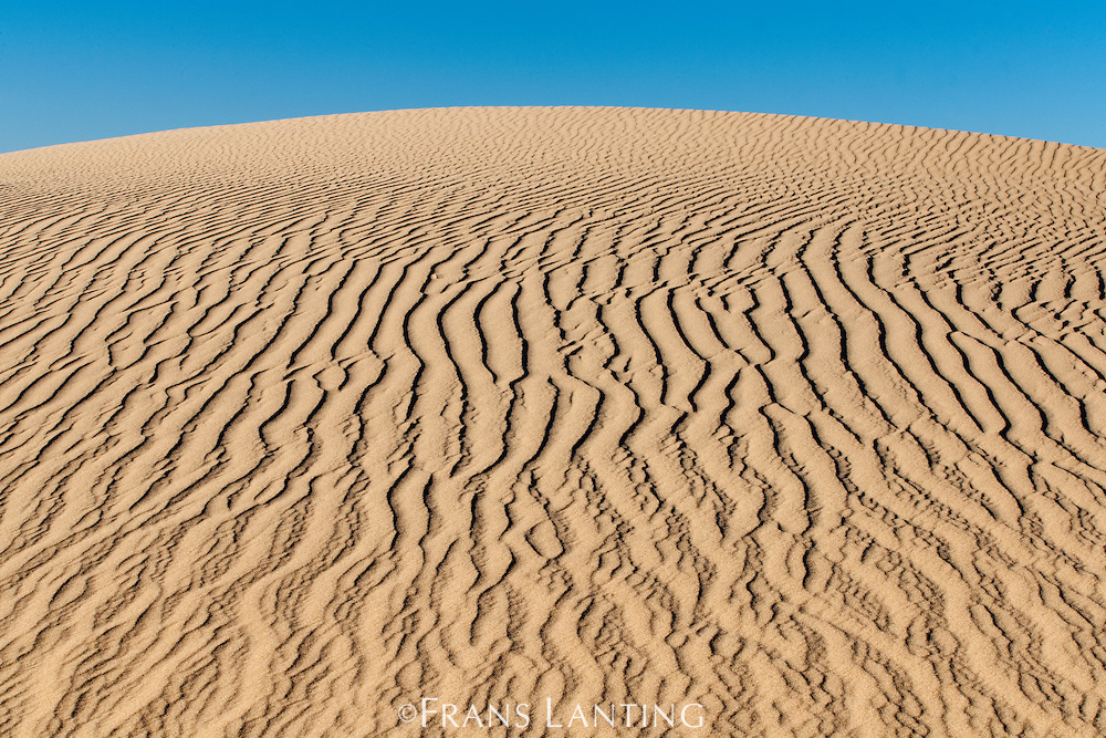 Sand dune patterns, Namib-Naukluft National Park, Namibia