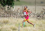 GEORGE, SOUTH AFRICA - SEPTEMBER 10: Glenrose Xaba of Mpumalanga Athletics in the women's 10km during the  2016 South African Cross Country Championships held at The Olympia School of Skills in Pacaltsdorp on September 10, 2016 in George, South Africa. (Photo by Roger Sedres/Gallo Images)