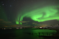 Northern Lights from Telegrafbukta Beach in Tromsø Norway. Image taken with a Nikon D800 and 24 mm f/1.4 lens (ISO 800, 24 mm, f/2, 8 sec). In camera jpg image extracted with Photo Mechanic. .