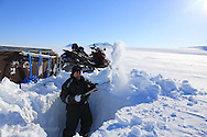 Glaciologist Tonu Martma of Tallinn University of Technology digs snow pit to take ice cores atop Kongsvegen glacier 750 meters (2460 feet) above sea level at Kongsfjorden; Svalbard, Norway.