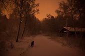 Winter night - Vinternatt