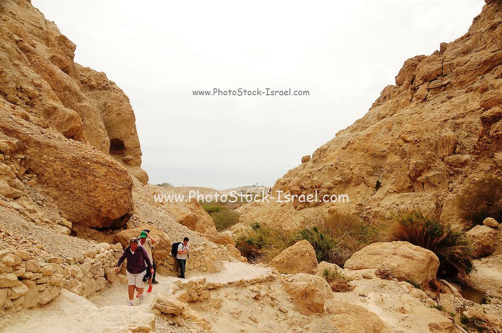 Israel, Dead Sea, Sdom Mountain A group hike on the mountain.